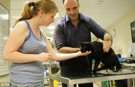 Noel Fitzpatrick, neuro-orthopaedic surgeon, and kennel assistant Jane Kilner, with Oscar the cat